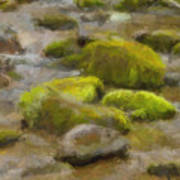 River Stones Art Print by Paul Bartoszek