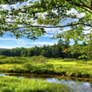 River Under The Maple Tree Art Print