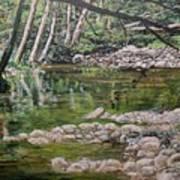 Rivers Of The Big Sur Art Print