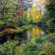 Riverscape In Autumn Art Print