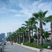 Riverside Promenade Park And Skyscrapers In Downtown Xiamen City Art Print
