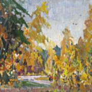 Road Of Autumn Art Print