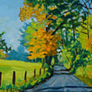 Road Through Barrenridge Art Print