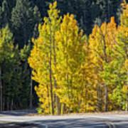 Road To Autumn Art Print