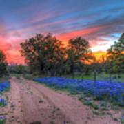 Road To Sunset Art Print