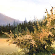 Roadside Apple Tree Art Print