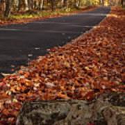 Roaring Fork Motor Trail In Autumn Print by Andrew Soundarajan