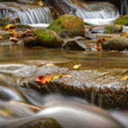 Roaring Fork Stream Great Smoky Mountains Art Print