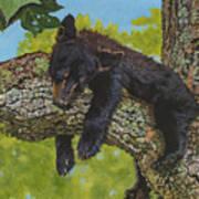 Rock-a-bye-baby/the Wild Bunch #2 Art Print