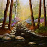 Rock Bottom Creek Art Print