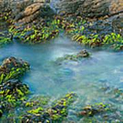Rock Formations In The Sea, Bird Rock Art Print