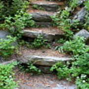 Rock Stairs Art Print