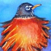 Rockin Robin Art Print
