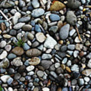 Rocks And Sticks On The Beach Art Print