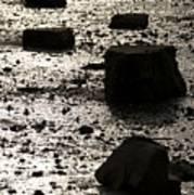 Rocks At Low Tide Art Print