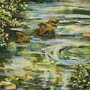 Rocks In A Stream Art Print