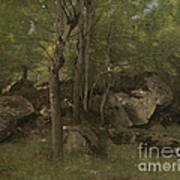 Rocks In The Forest Of Fontainebleau Art Print