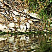 Rocks Reflecting Off Water Art Print