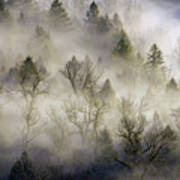 Rolling Fog In Sandy River Valley Art Print