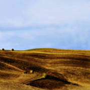 Rolling Hills Of Hay Art Print