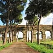 Roman Aqueducts Art Print