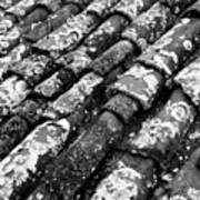 Roof Tiles Art Print