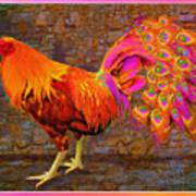 Rooster Peacock Art Print