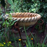 Rope Edged Bird Bath Art Print