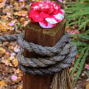 Rope Pillar And Camellia Art Print