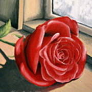 Rose By A Window Art Print