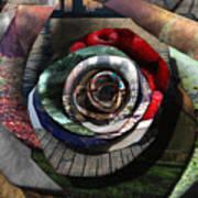 Rose - Collaged Petals Art Print