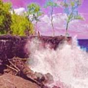 Rose Colored Splash At Mackenzie Art Print