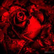Furious Rose Magic Red Art Print