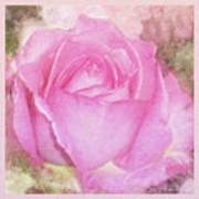 Enjoy A Rose Soft Pastel Art Print