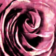 Rose Stamped Art Print