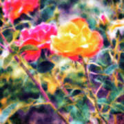 Rose Sweet Art Print