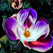 Rose With No Boundaries Art Print