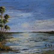 Roseate Beach Art Print