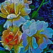 Roses Aglow Art Print