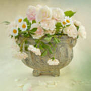 Roses And Daisys Art Print
