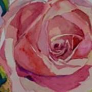 Roses And More  Art Print