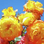 Roses Garden Summer Art Print Blue Sky Yellow Orange Art Print