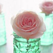 Roses In Green Jars Art Print