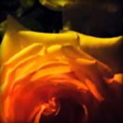 Roses In Moonlight 11 Art Print
