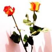 Roses In The Light Art Print