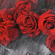 Roses On Lace Art Print