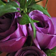 Roses Up Close Art Print