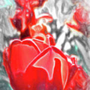 Rosy Swirl Art Print