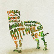 Rottweiler Dog Watercolor Painting / Typographic Art Art Print