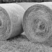 Round Hay Bales Black And White  Art Print by James BO  Insogna